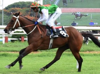 Trouvaille Triumphs in a spectacular fashion in Villoo Poonawalla Indian 2000 Guineas
